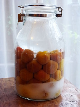 100618pickled-ume.jpg