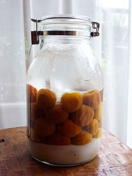 100620pickled-ume01.jpg