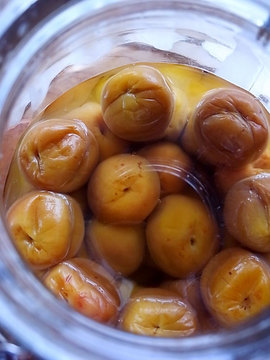 100707pickled-ume01.jpg
